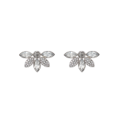 Lily and Rose - Lucia Earrings – Silvershade