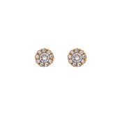 Lily and Rose - Petite Miss Sofia Earrings – Crystal (gold)